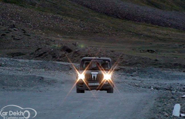 The Story of a Thar in the Mountains