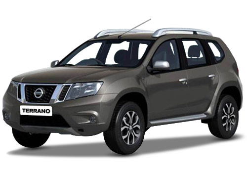 Nissan Terrano Bronze Grey Color